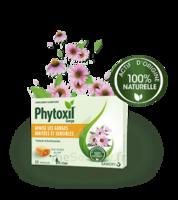 Phytoxil Pastilles Gorge Pastilles Adulte Enfant +12 Ans B/20 à TOURS