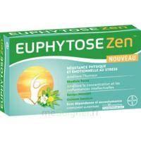 Euphytosezen Comprimés B/30 à TOURS