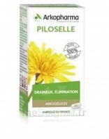 Arkogélules Piloselle Gélules Fl/45 à TOURS