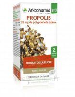 Arkogélules Propolis Bio Gélules Fl/45 à TOURS