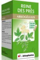 Arkogelules Reine Des Prés Gélules Fl/45 à TOURS