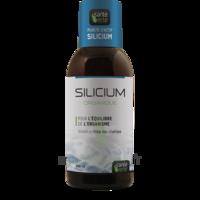 Santé Verte Silicium Solution buvable Fl/500ml à TOURS