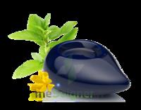 PURESSENTIEL DIFFUSION Diffuseur à chaleur douce céramique bleu marine à TOURS