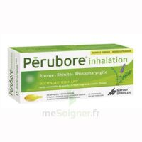 Perubore Caps Inhalation Par Vapeur Inhalation Plq/15 à TOURS