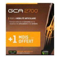 GCA 2700 Comprimés articulations 3*B/60 à TOURS