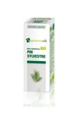 Huile essentielle Bio Pin sylvestre à TOURS