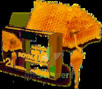 Gelée Royale Bio Solution Buvable 20 Ampoules/10ml à TOURS