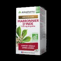 Arkogélules Marronnier D'inde Bio Gélules Fl/45 à TOURS