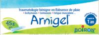 Boiron Arnigel Gel T/45g à TOURS